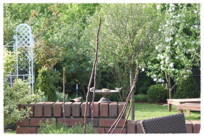 Kleine Gartenbesucher... :-)