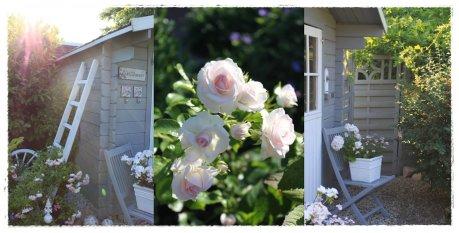 ★ Gartenimpressionen