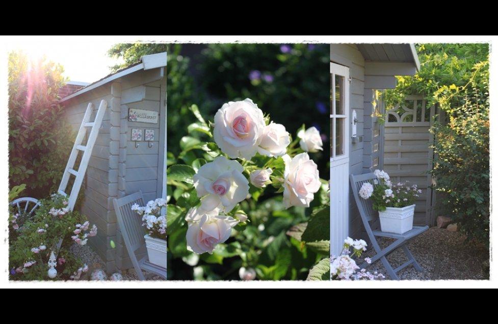 ★ Gartenimpressionen von Frangipani