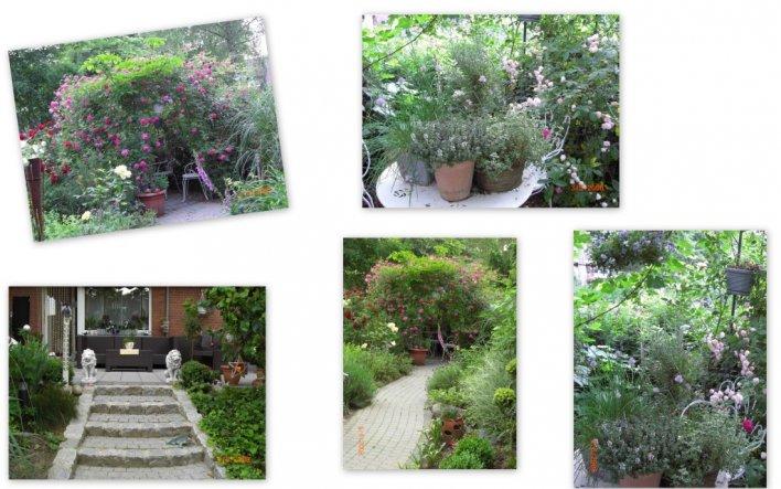 Terrasse / Balkon 'Mein Garten'