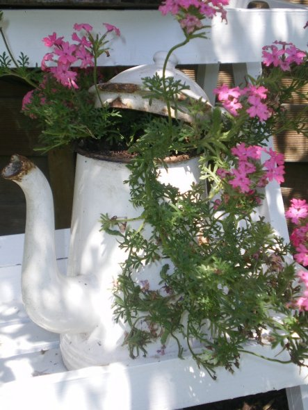 Garten 'Blütenträume '