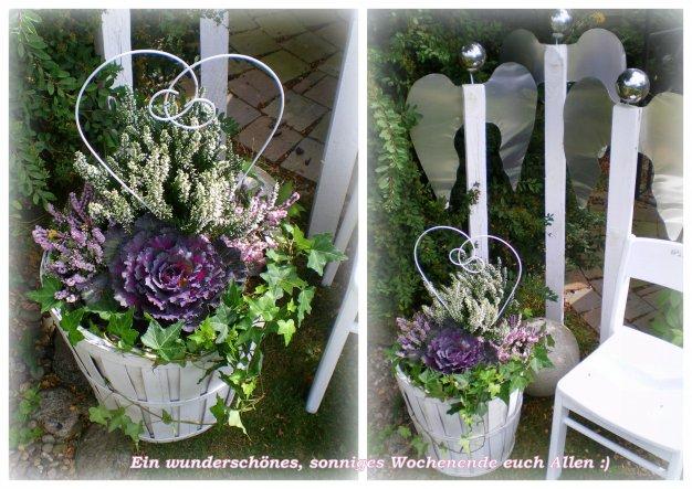 Garten 'Mein Paradies 2011/2012'