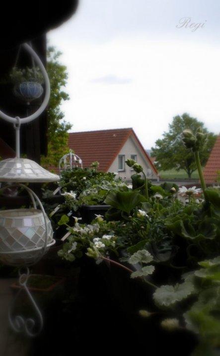 Terrasse / Balkon 'Balkon 2010'