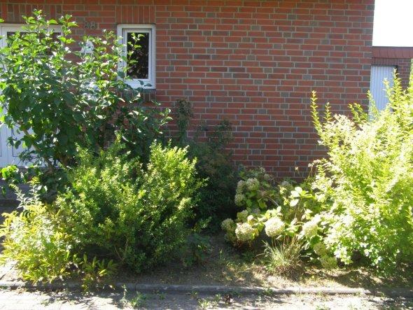 Garten 'Der Vorgarten - Vorher'