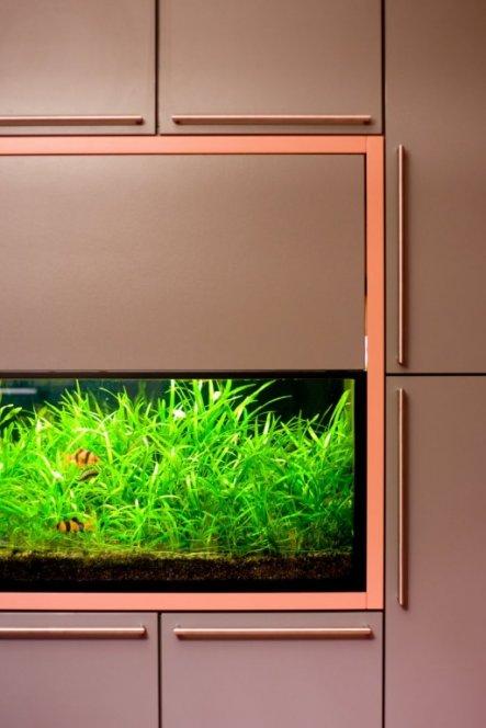 Wohnzimmer \'Aquarium\' - Berlin Home - Zimmerschau