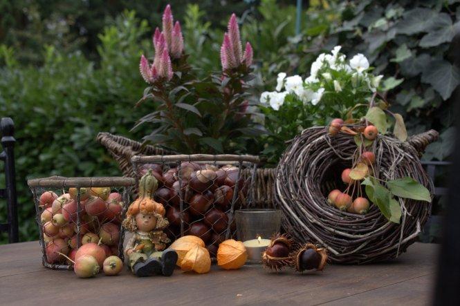 habe ein paar Kastanien und Zieräpfelchen geerntet... nun zieren sie in Drahtkörben den Septembertisch auf der Terrasse ♥ achja, die Lampions (Physali