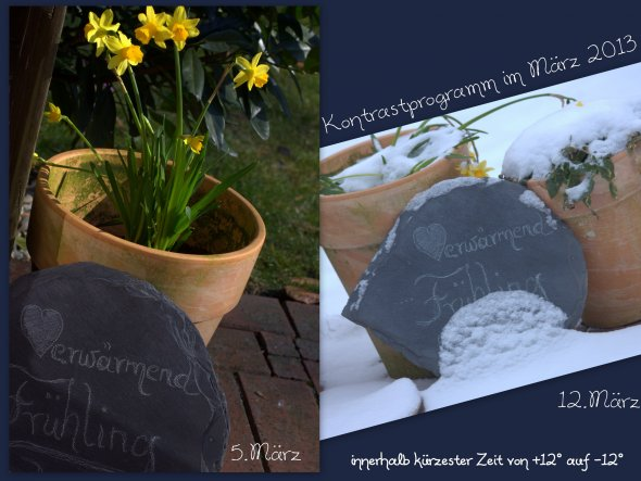 wirklich ...zwischen diesen beiden Fotos liegt nur eine Woche...wir durften an zwei Tagen schon Sonne und Frühling genießen, und dann hat Frau Holle u