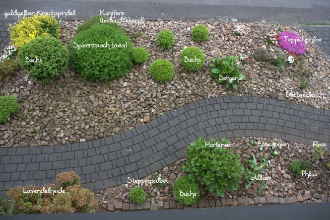 extra für eine interessierte ZS-Dame ;-) Habe mal versucht, die Namen meiner Vorgartenpflanzen aufzuschreiben. Auf den anderen Fotos kann man t