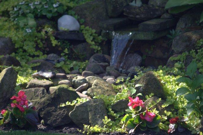 nachwievor ein Highlight im Garten ;-) Unser Bachlauf im Juni 2013
