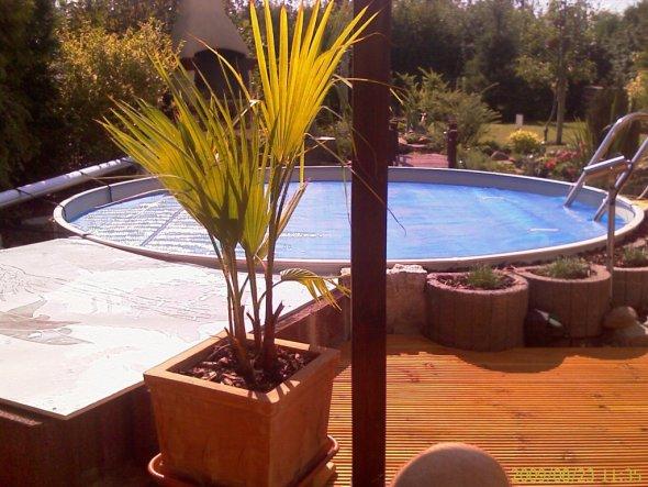 rundpool gestaltung bildimpressionen pool und schwimmbad selber bauen pictures 11 pools for
