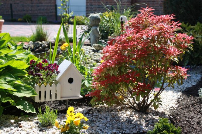 Garten 'Vorgarten'