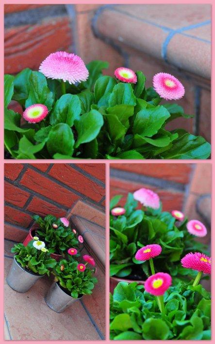 Garten 'Handmade'