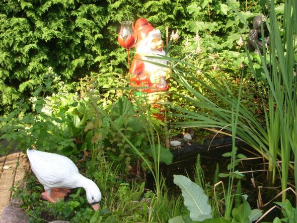 Garten 'in unsem Garten'