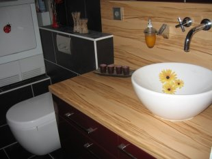 Gäste WC mit Funktion