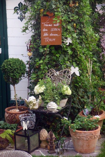 am Gartenhaus im Efeu