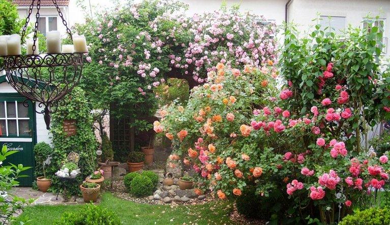 garten: ideen zur gartengestaltung - zimmerschau, Garten und erstellen