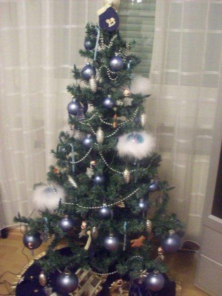 der Christbaum bei meinem großen Sohn im Zimmer, er mag die Farbe blau, er hat sogar blaue Zuckerstangen gefunden