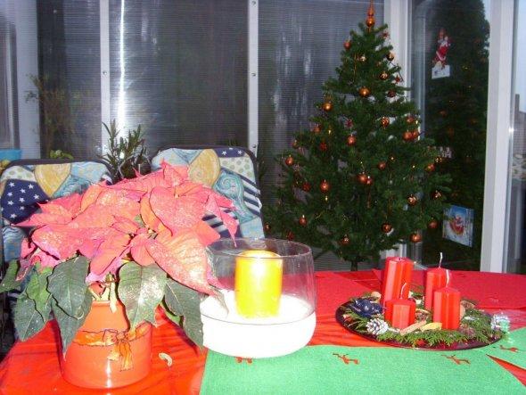 1. Advent im Wintergarten