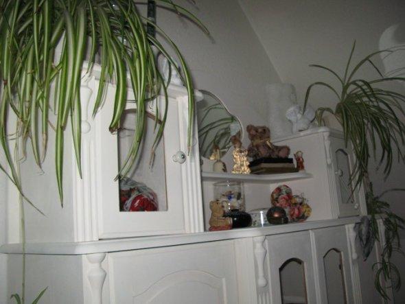 arbeitszimmer b ro wohn und chillzimmer von chey 17044 zimmerschau. Black Bedroom Furniture Sets. Home Design Ideas