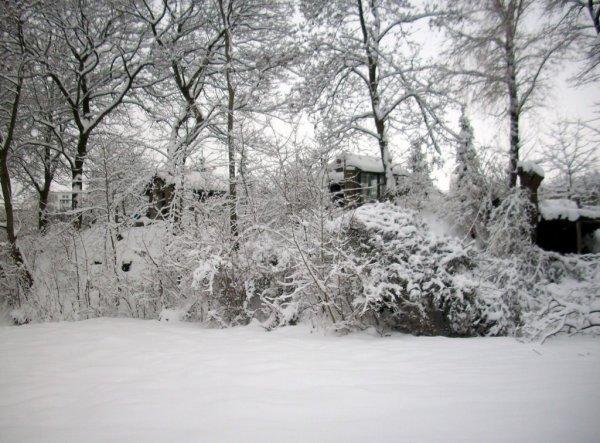 Garten 'Winterlandschaft'