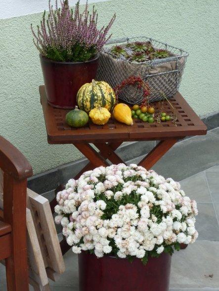 Garten 'Rosen'