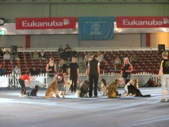 Hobbyraum 'VDH 2011 Dortmund'