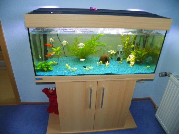 Kinderzimmer 39 kinderzimmer 39 mein domizil zimmerschau for Aquarium im kinderzimmer
