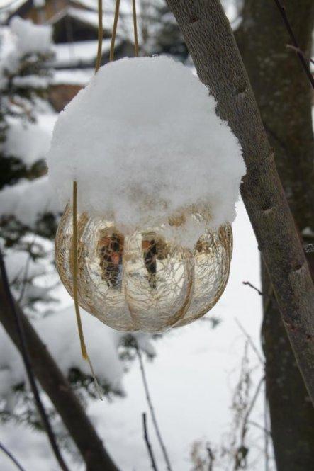 Garten 'Winterimpressionen'