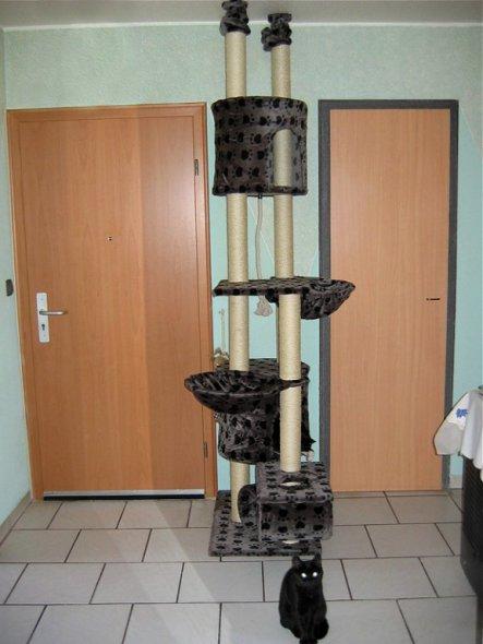 flur diele eine wohnung halt von nawarana 19997. Black Bedroom Furniture Sets. Home Design Ideas
