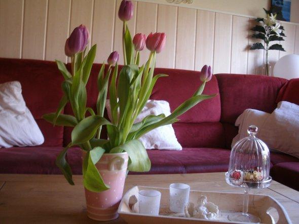 Deko 'Frühling 2011'