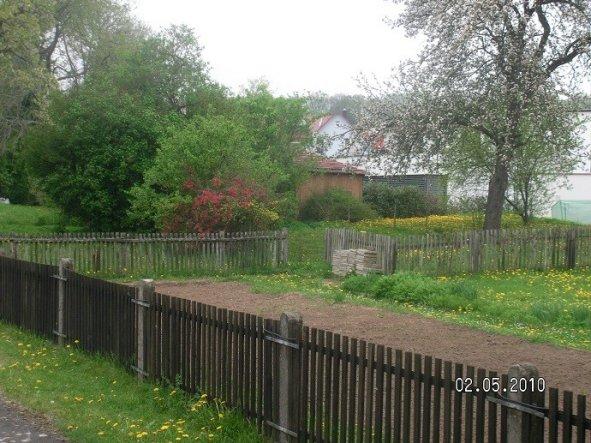 Das ist der rechte Teil des Gartens, der geht bis zum dem grünen Netz da rechts im Bild