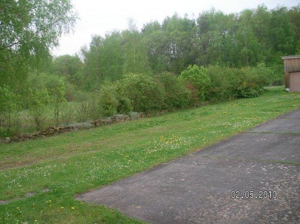 Das ist der linke Teil des Gartens. Die Mitte fehlt*g* Das Gründstück geht eigentlich bis zu den großen Bäumen,wird zur Zeit aber nicht genutzt, weil