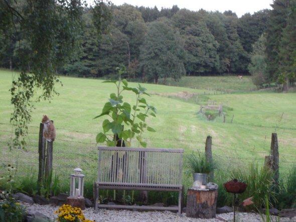 Garten U0027Gartenhausu0027