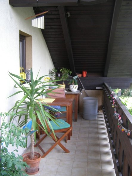 Terrasse / Balkon 'Meine Sommeroase'
