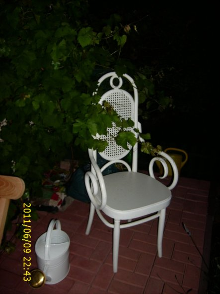 Den Stuhl hat meine Mutti auf dem Sperrmüll ergattert und geweißelt...