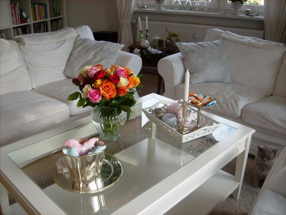 Zwar noch keine Freiland-Rosen, aber dafür ein kleiner Farbtupfer im Wohnzimmer