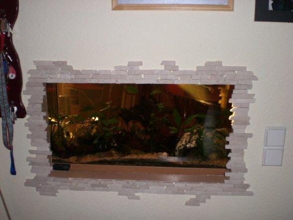 unser Aquarium vom flur aus