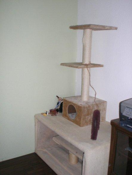 Katzenparadies die untere Kiste ist auch selbst gebaut