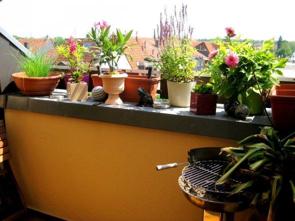 Terrasse / Balkon 'Summertime '
