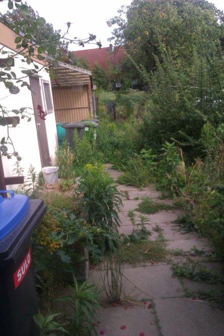 garagenwand und weg nach hinten im Oktober 2011