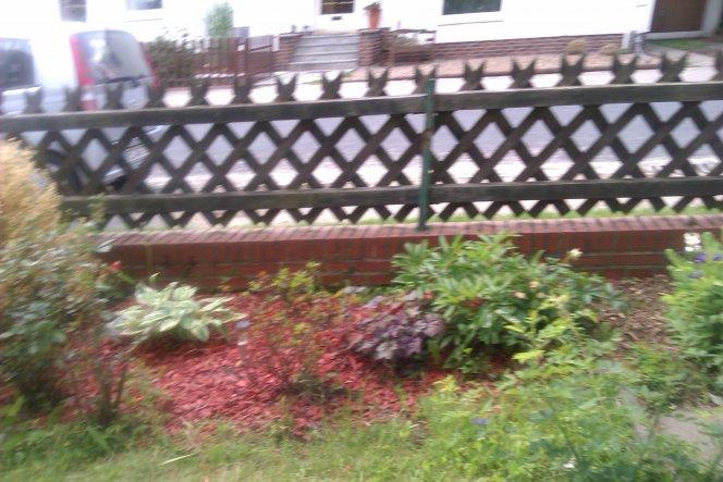 Das beet hatte ich im Herbst gleich ein wenig umgestaltet und mit mahagoniemulch versehen - die Rosen sind hart im nehmen und fangen gerade an zu blüh