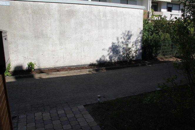 (12.05.12) Um die Garagenwand der nächsten Hausreihe zu kaschieren, haben wir hier Reben gepflanzt.