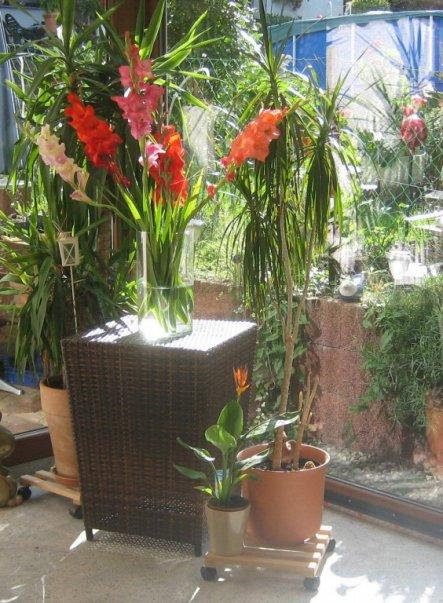 Wohnzimmer 'Wintergartentraum'