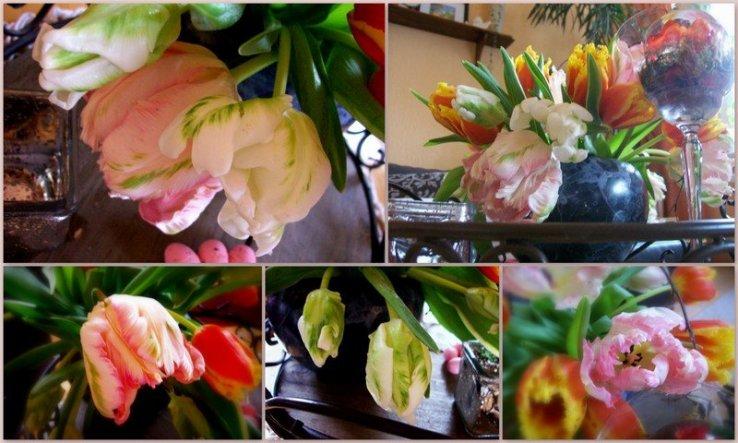 Ich schicke Euch einen lieben Blumengruß und wünsche Euch eine schöne Woche....bei uns schneit es schon wieder, es will einfach kein Frühling werden!