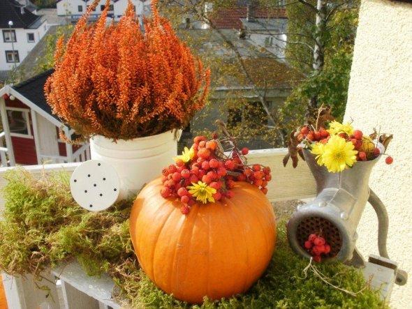 Terrasse / Balkon 'ღGoldener Herbst 2011ღ' - Alles ist gut ...