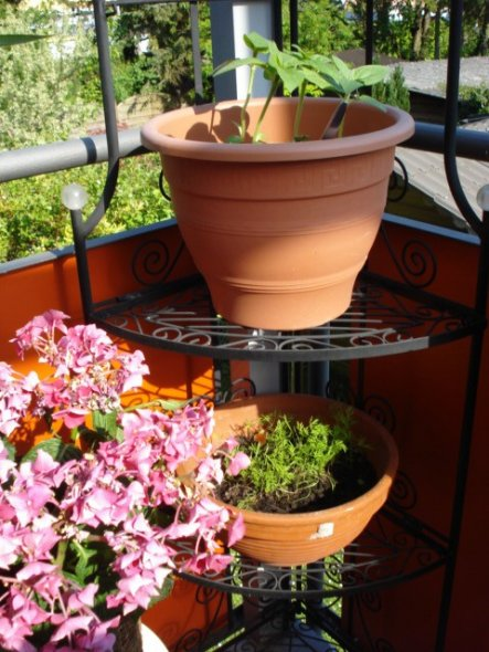 terrasse balkon 39 unser balkon 39 my home is my castle. Black Bedroom Furniture Sets. Home Design Ideas