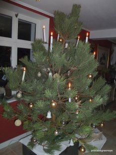 Mein RaumWeihnachten 2010