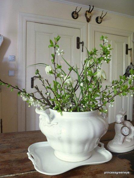 weisse Schachbrettblumen aus dem Garten in die Küche geholt