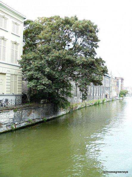 Dieses Bild ist eines meiner liebsten Erinnerungen aus GEnt - es zeigt, wie schön und friedlich es dort ist, obwohl eine grosse Stadt ist.