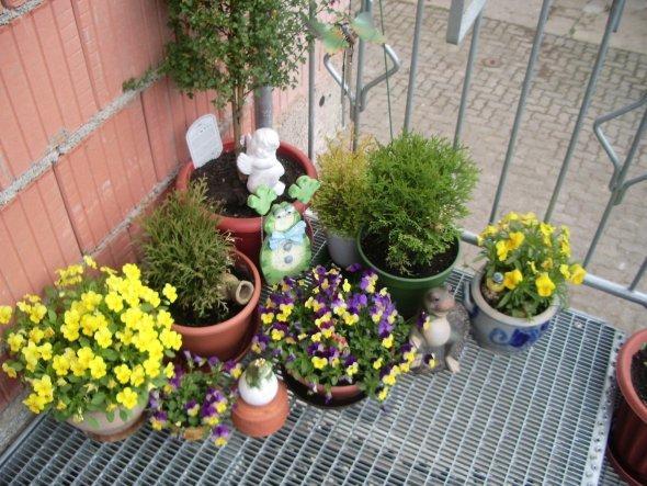 Terrasse / Balkon 'Garten/ Balkon'